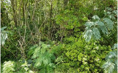 NW 108TH LANE (LEFT), Jasper, FL 32052 - Photo 1