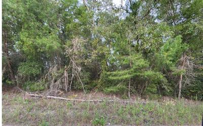 TBD 89TH RD., OBrien, FL 32071 - Photo 2