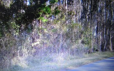 TBD NW SCENIC LAKE DRIVE, Lake City, FL 32055 - Photo 1
