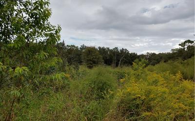 117TH ROAD, McAlpin, FL 32062 - Photo 1