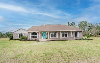 480 SW MARIGOLD PL, Fort White, FL 32038 - Photo 1