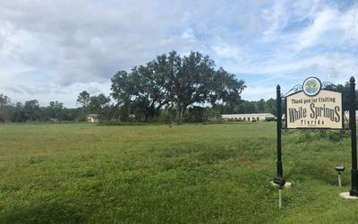 TBD HWY 41, White Springs, FL 32096 - Photo 1