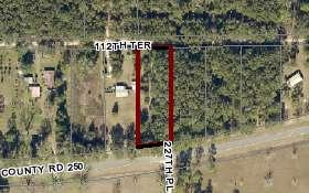 CR 250 (LOT 11), Dowling Park, FL 32060 - Photo 1