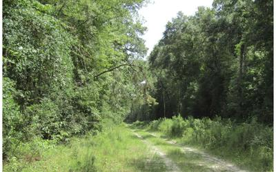 LOT49 SW 32ND LN, Jasper, FL 32052 - Photo 2