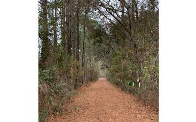 5904 COUNTY ROAD 136A, Live Oak, FL 32060 - Photo 2