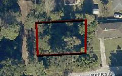 TBD NW HARPERS PLACE, Lake City, FL 32055 - Photo 1