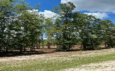 EFT. OR FT WHITE SOUTH 2 MILES, Fort White, FL 32038 - Photo 1