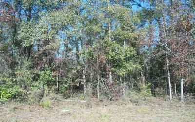 TBD NW 26TH TERRACE, Jennings, FL 32053 - Photo 1