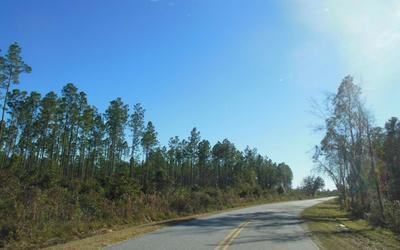 TBD N CR 51, Jasper, FL 32052 - Photo 2