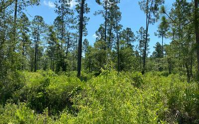 TBD CR 25A, White Springs, FL 32096 - Photo 1