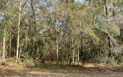 NW 29TH BLVD, Jennings, FL 32053 - Photo 2