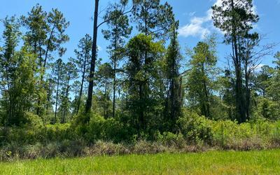 TBD CR 25A, White Springs, FL 32096 - Photo 2