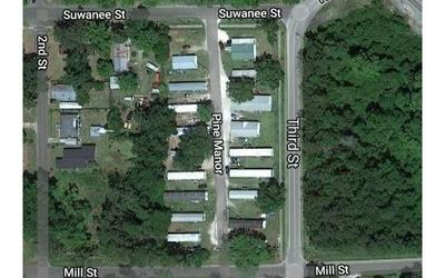 10506 PINE MNR, White Springs, FL 32096 - Photo 2