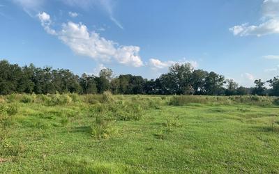 TBD CR 250, Live Oak, FL 32060 - Photo 2