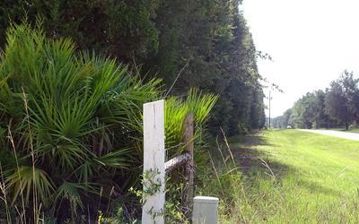 869 NE 100TH STREET RD, Branford, FL 32008 - Photo 1