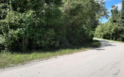 SE OAK TREE ROAD, Branford, FL 32008 - Photo 2