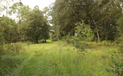 3901 181ST RD, Live Oak, FL 32060 - Photo 1