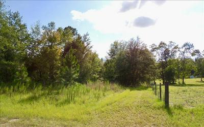 N HERON, Fort White, FL 32038 - Photo 2