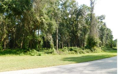 834 NW COMMERCE DR, Lake City, FL 32055 - Photo 2