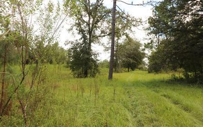 3901 181ST RD, Live Oak, FL 32060 - Photo 2