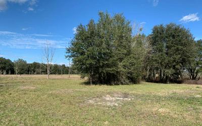 213 SW SEDGEFIELD FARMS GLN, Fort White, FL 32038 - Photo 2