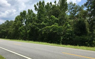 2006 NW THUNDER ST, White Springs, FL 32096 - Photo 1