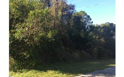 TBD NW HARPERS PLACE, Lake City, FL 32055 - Photo 2