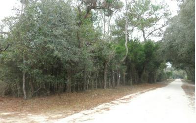 13900 74TH ST, Live Oak, FL 32060 - Photo 1