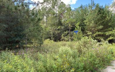 SE REMINGTON DRIVE, Lee, FL 32059 - Photo 1