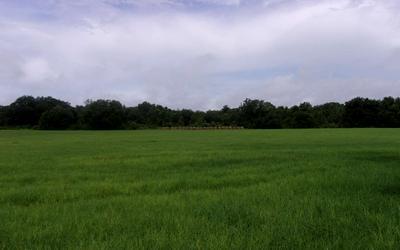 121 ST ROAD, OBrien, FL 32062 - Photo 2