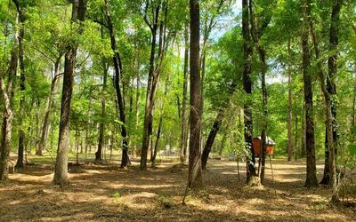 192 SW LONCALA LOOP, Fort White, FL 32038 - Photo 1