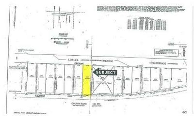 CR 250 (LOT 11), Dowling Park, FL 32060 - Photo 2