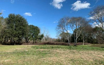 213 SW SEDGEFIELD FARMS GLN, Fort White, FL 32038 - Photo 1