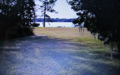 TBD NW SCENIC LAKE DRIVE, Lake City, FL 32055 - Photo 2