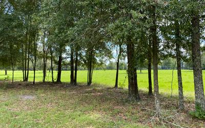 TBD E CR 349, OBrien, FL 32071 - Photo 1