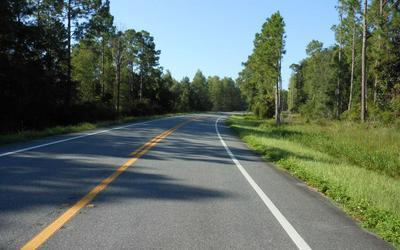 TBD S FLETCHER AVE, Mayo, FL 32066 - Photo 2