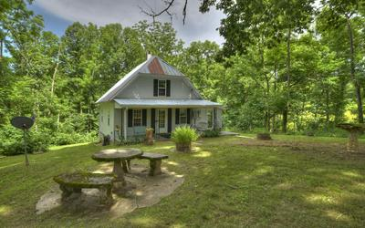 898 HIGHWAY 325, Blairsville, GA 30512 - Photo 2