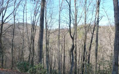 00 VALLEY VIEW HEIGHTS, Andrews, NC 28902 - Photo 2