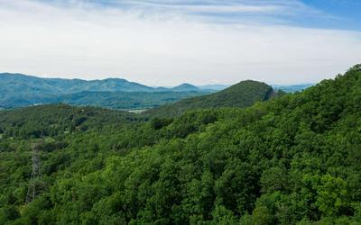 TBD HEALY FIELDS, Andrews, NC 28901 - Photo 1