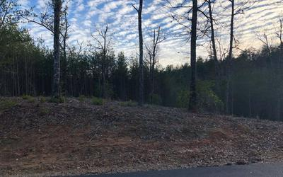 LOT51 DOUBLE SPRINGS, Blairsville, GA 30512 - Photo 2