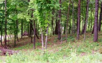 LOT 4 WILLOW RIDGE, Warne, NC 28909 - Photo 2