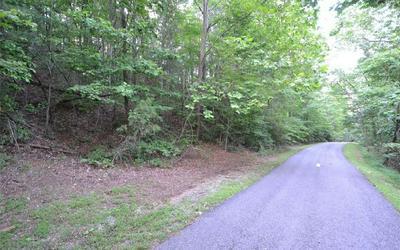 10 PICKETT MILL LN, Ellijay, GA 30540 - Photo 2
