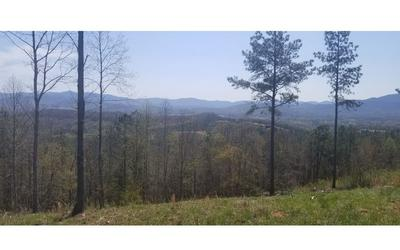 29 THIRTEEN HUNDRED, Blairsville, GA 30512 - Photo 2