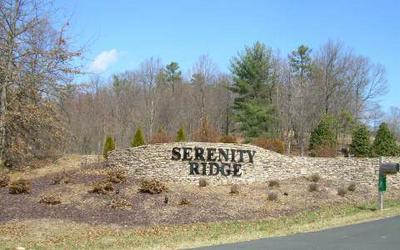 LT18 SERENITY RIDGE, Blairsville, GA 30512 - Photo 1