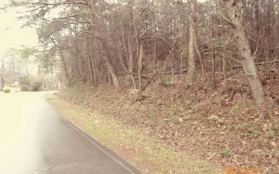 LT 10 CEDAR CLIFF, Hiawassee, GA 30546 - Photo 2