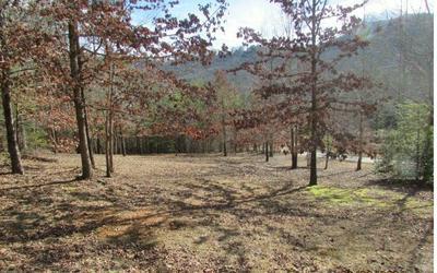 TR 1 SKY HAWK SPUR, Hiawassee, GA 30546 - Photo 2