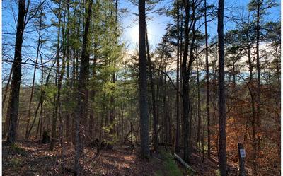 1684 SHADE TREE, Ellijay, GA 30540 - Photo 1