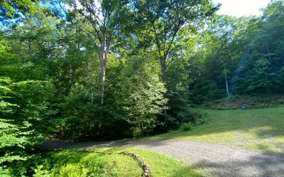 SAM'S BRANCH VIEW, Marble, NC 28905 - Photo 2