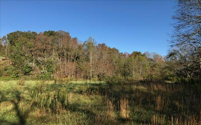 LOT18 RIVER MEADOWS, Blairsville, GA 30512 - Photo 1
