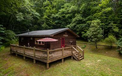 65 JAMES DR, Blairsville, GA 30512 - Photo 1